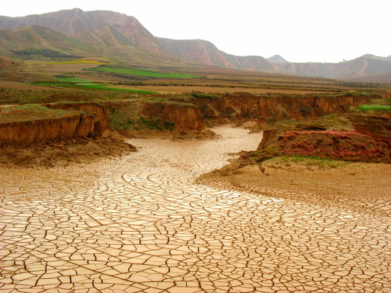 Dry river, parched earth, drought